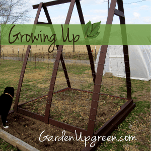 Growing Up! shared by Garden Up Green