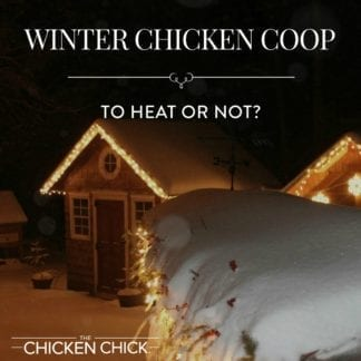 Whether to Heat the Chicken Coop or Not?