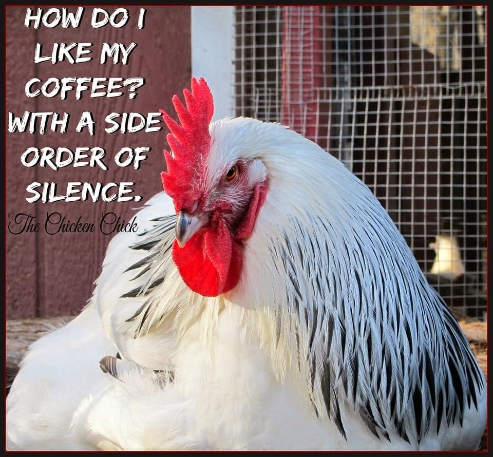 How do I like me coffee with a side order of silence