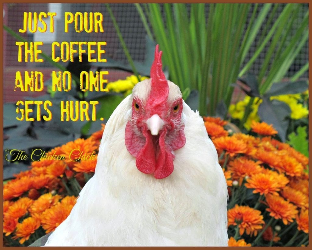 Just pour the coffee and no one gets hurt