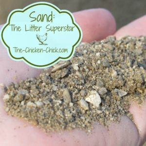 Sand The Chicken Coop Litter Superstar