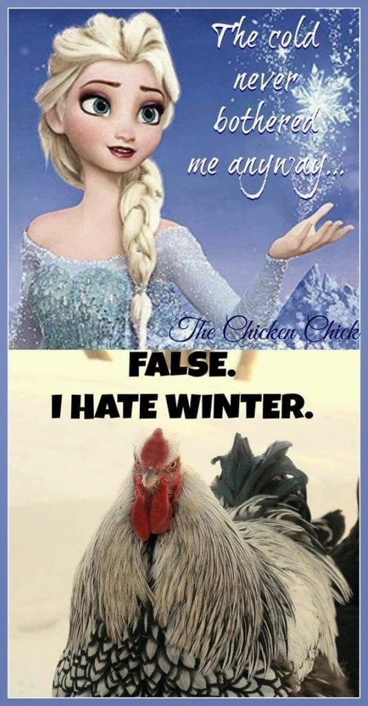 The cold never bothered me anyway False I hate winter