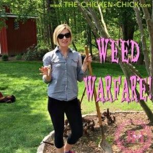 Julie the Garden Fairy: Weed Warfare