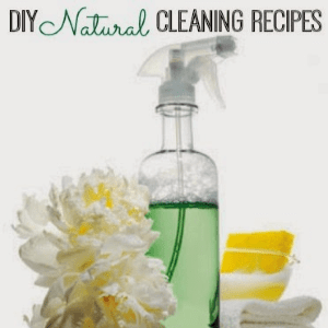 12 DIY Cleaning Recipes, shared by Inspiration for Moms
