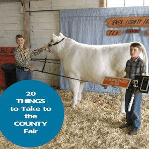 20 Things to Bring to the County Fair, shared by 4 Wiley Farm