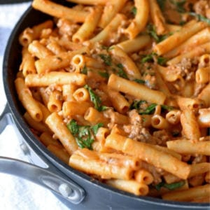 Cheesy Tomato Pasta Skillet Recipe, shared by Honey and Birch