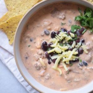 Crockpot Chicken Enchilada Dip, shared by My Suburban Kitchen