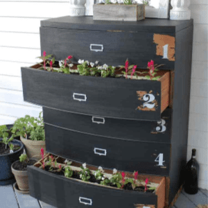 DIY Dresser Flower Planter, shared by The Summery Umbrella