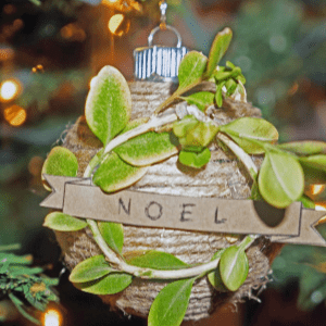DIY Earthy Ornaments, shared by Honey Lamb & I