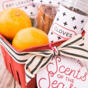 DIY Gift: Scents of the Season Simmering Potpourri, shared by Tried and True