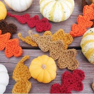 Fall Oak Leaves Crochet Pattern, shared by The Painted Hinge
