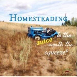 Homesteading. Is the Juice Worth the Squeeze shared by Livin Lovin Farmin