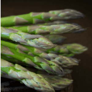How to Grow Asparagus from Seed, shared by Celebrating a Simple Life
