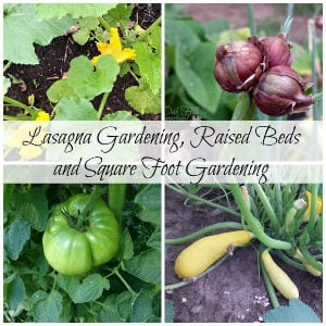 Lasagna Gardening, Raised Beds & Square Foot Gardens shared by Oak Hill Homestead