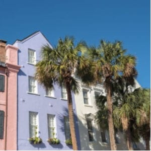 Video of Charmin Charleston South Carolina shared by Simple Nature Decor