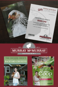 Murray McMurray Hatchery Prize Package Giveaway at The Chicken Chick®
