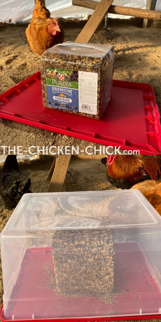 Flock Block in a Plastic Container